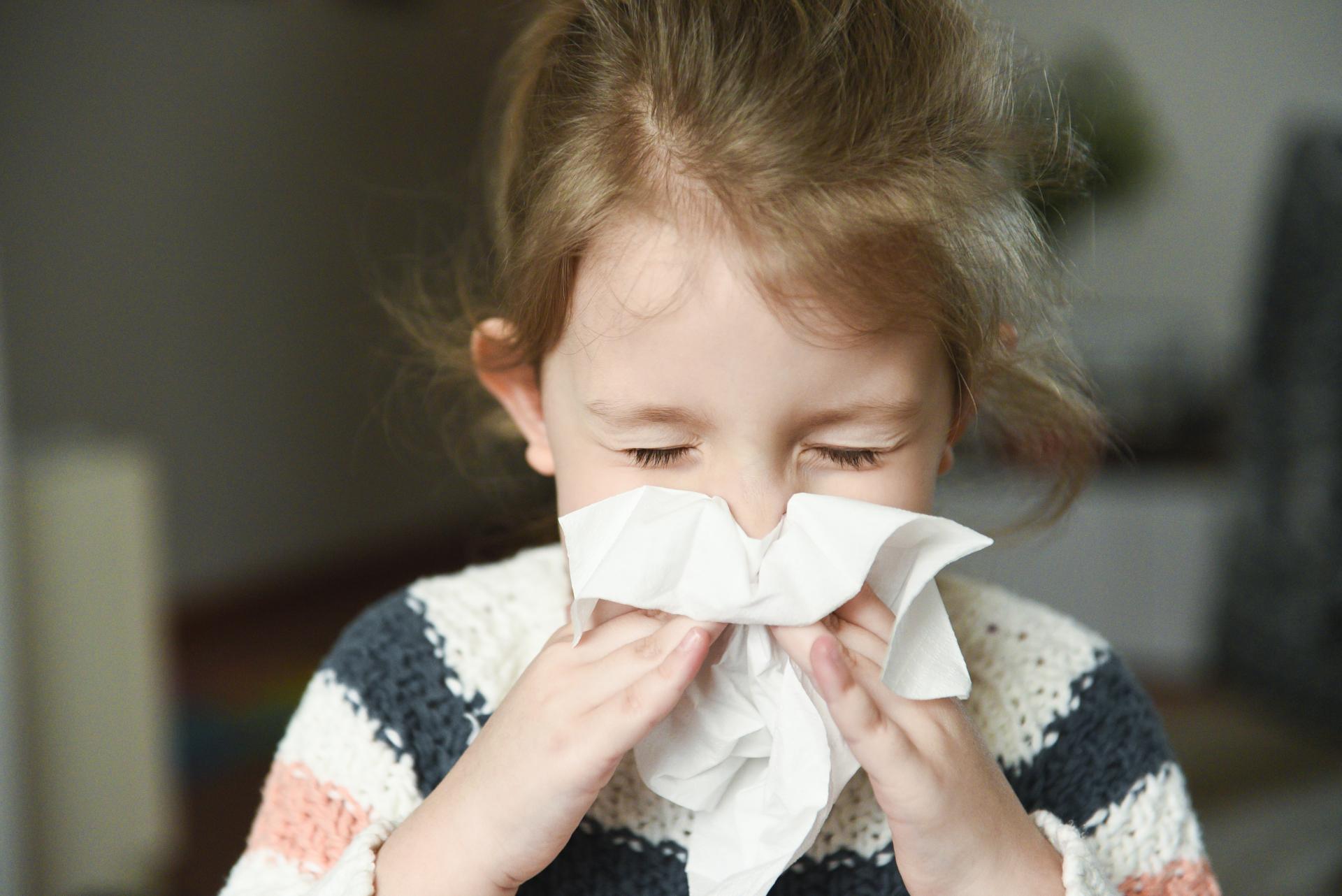 Influenssakausi